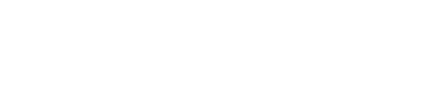 novo foundation logo